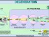 Bible-Chart-Degeneration