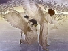 1apx_angelpraisea
