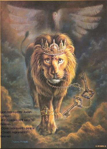 1llx_lion