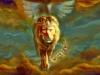 1llx_lionjudakeys