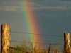 4rsx_rainbowc