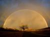 4rsx_rainbowelam